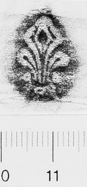 Image Description for http://diglib.hab.de/varia/ebdb/h0006562.jpg