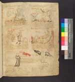 Cod. Guelf. 35a Helmst. — Physiologus - Biblia pauperum — Österreich, 1340/50