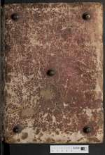 Hs. 247 — Nicolaus de Lyra — 15. Jh., 1. Hälfte